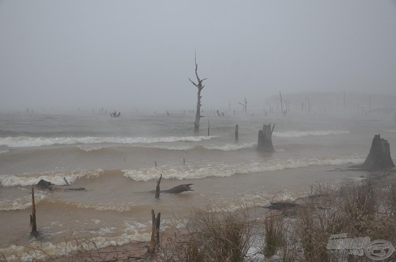 Az utóbbi 60 év legkegyetlenebb időjárása fogadott minket a táborépítés napján, március elején