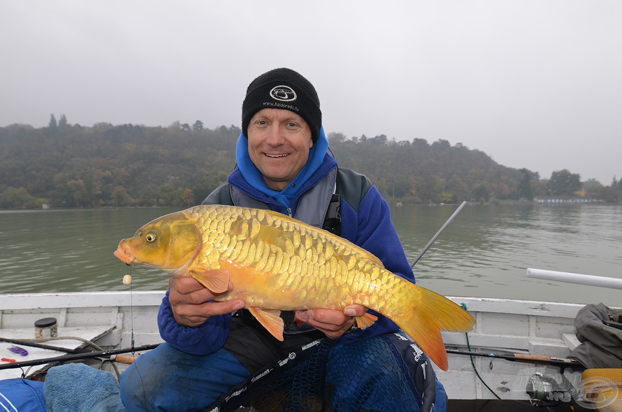 """Ez egy igazi """"aranyhal"""", kívántunk is tőle egyet, amelyet rövid időn belül teljesített"""