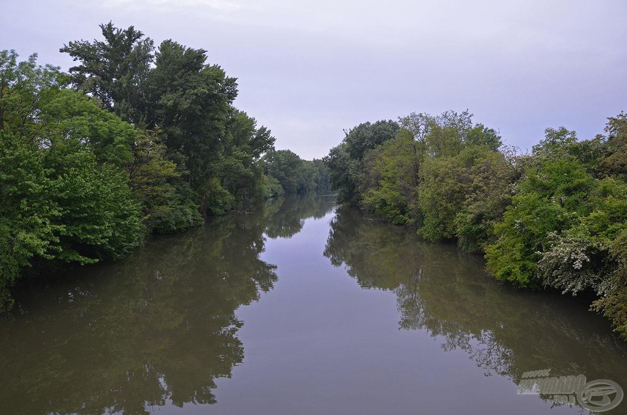 Íme, a Kis-Duna, ez a kép tárult elénk kora reggel