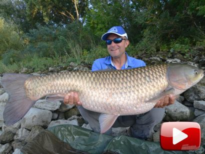 Vadvízi kalandok 35. rész – Dunai amurok nyomában
