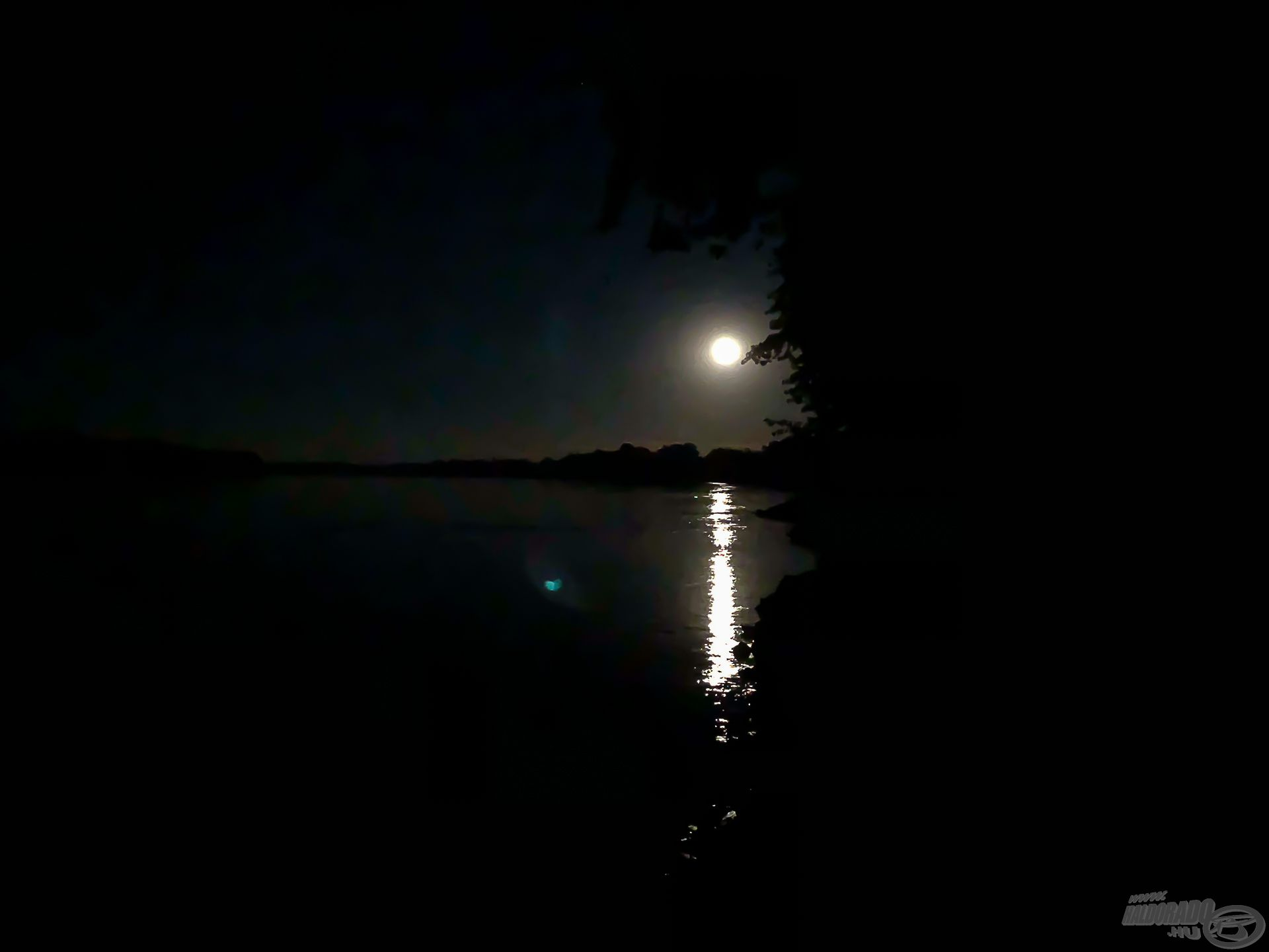 Amikor a holdfény beragyogja a víztükröt, ezek a legígéretesebb pontyos éjszakák!