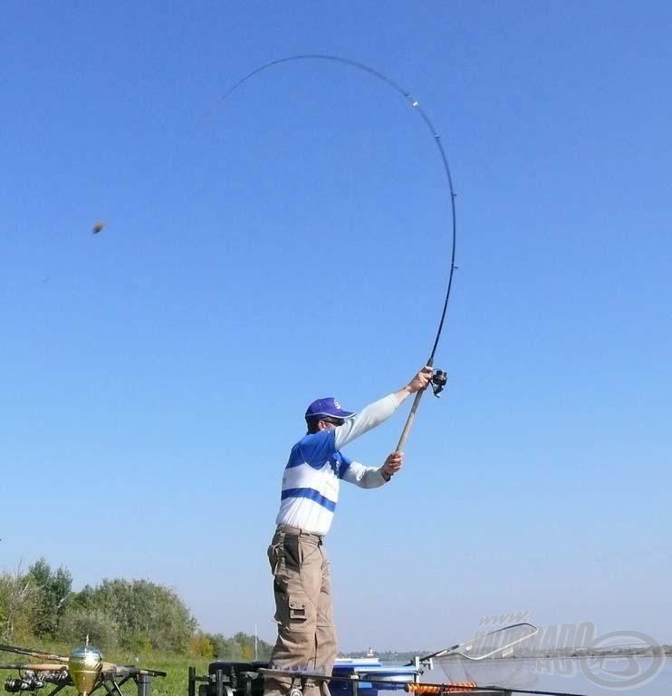 A bekevert mennyiség maximum felét kell az alapozó etetés során bejuttatni, majd kezdődhet a horgászat. A Royal Sensitive Feeder görbületi íve dobáskor is csodálatos!