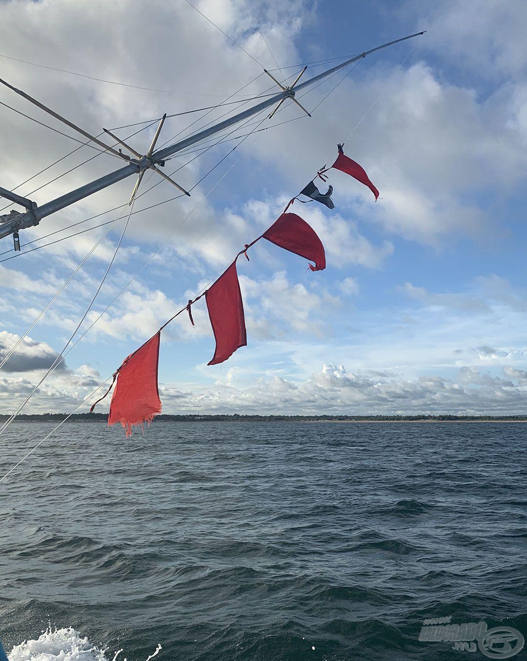 A 4 piros zászló 4 vitorláshalat jelent, nagyon eredményes nap volt!