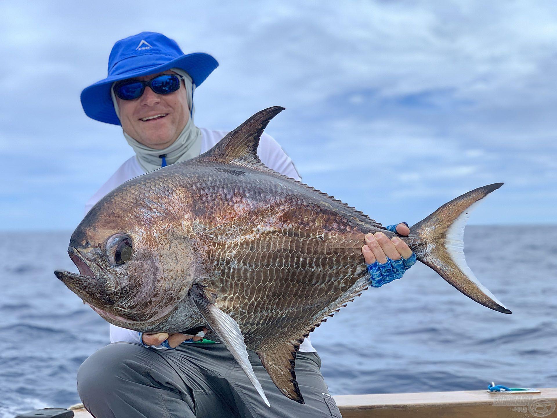 Egy újabb különleges mélytengeri hal: big-scale pomfret