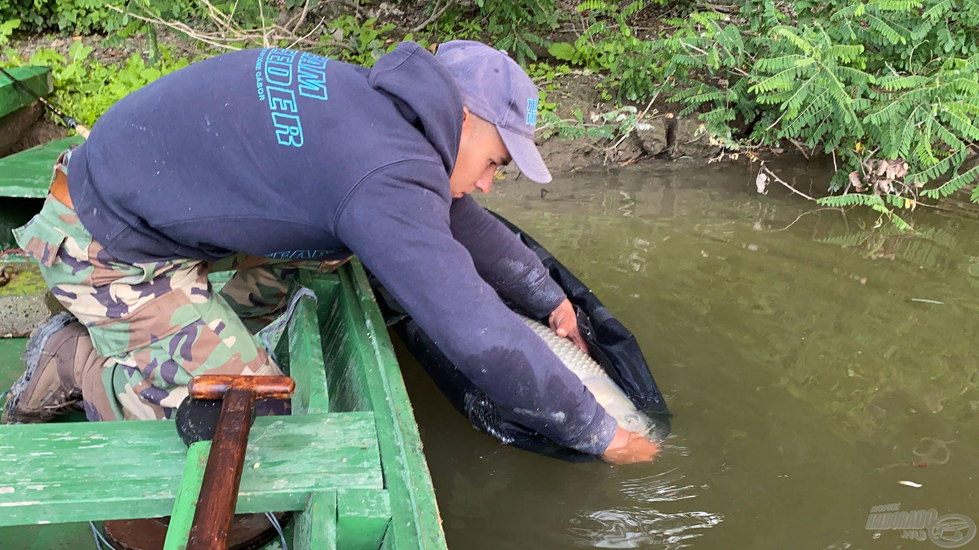 Nagyon vigyáztunk MINDEN kifogott halra és a lehető legkíméletesebben bántunk velük