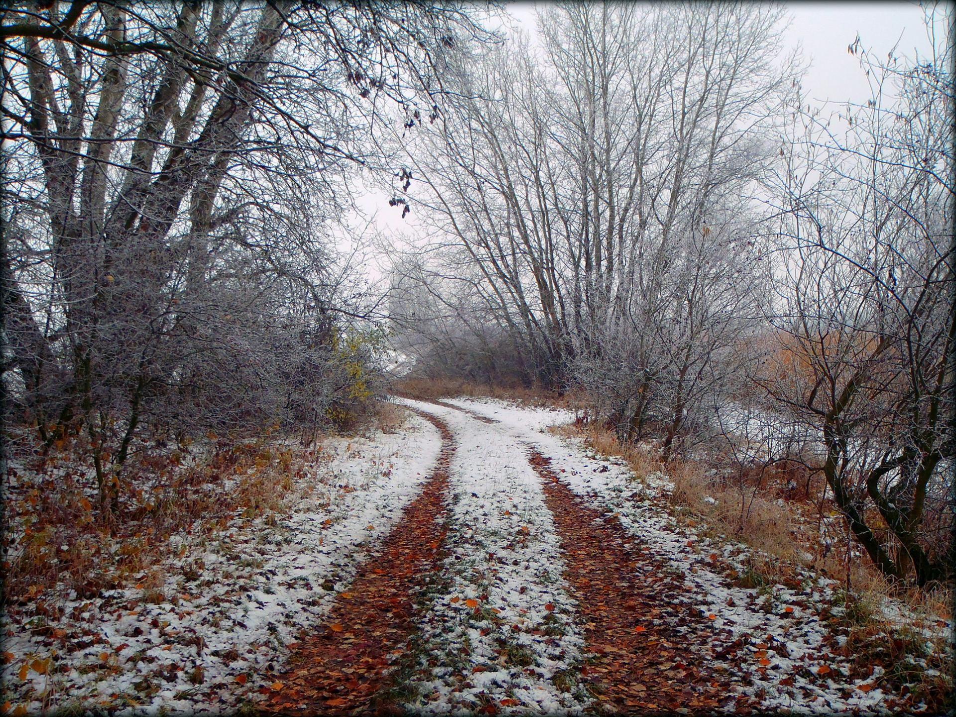 Hosszú téli sétáim egyike: november végére megérkeztek az első fagyok, ekkor már majdnem lemondtam a horgászatról
