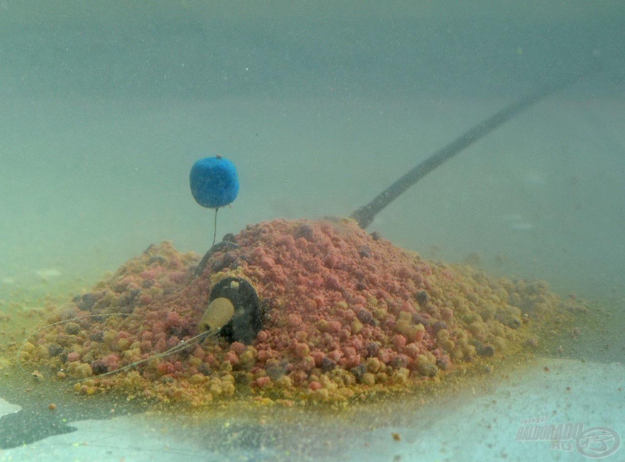 A mederfenéken, kajakupac közepén várja a halakat