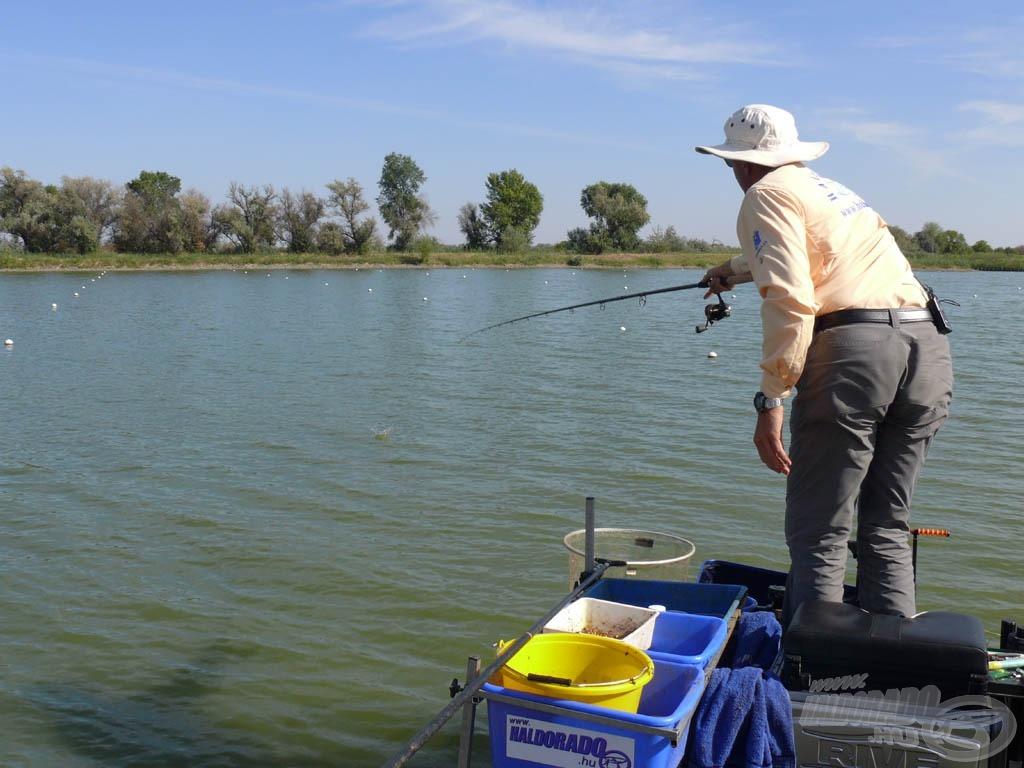 Szegeden az eredményes nyári horgászatok egyik titka a partszéli pontyhorgászat. Ekkor a feeder-végszereléket nem kell bedobni, hanem csak be kell lógatni a parttól mindössze 7-8 méterre