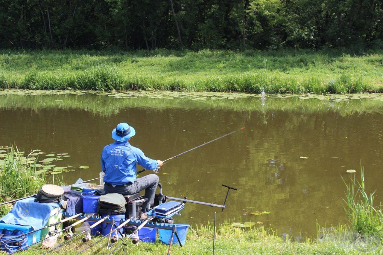 """A szemben lévő """"tökleveles"""" mindig tartogatott néhány halat, ám ezek megfogásához precíz, pontos horgászatra volt szükség!"""