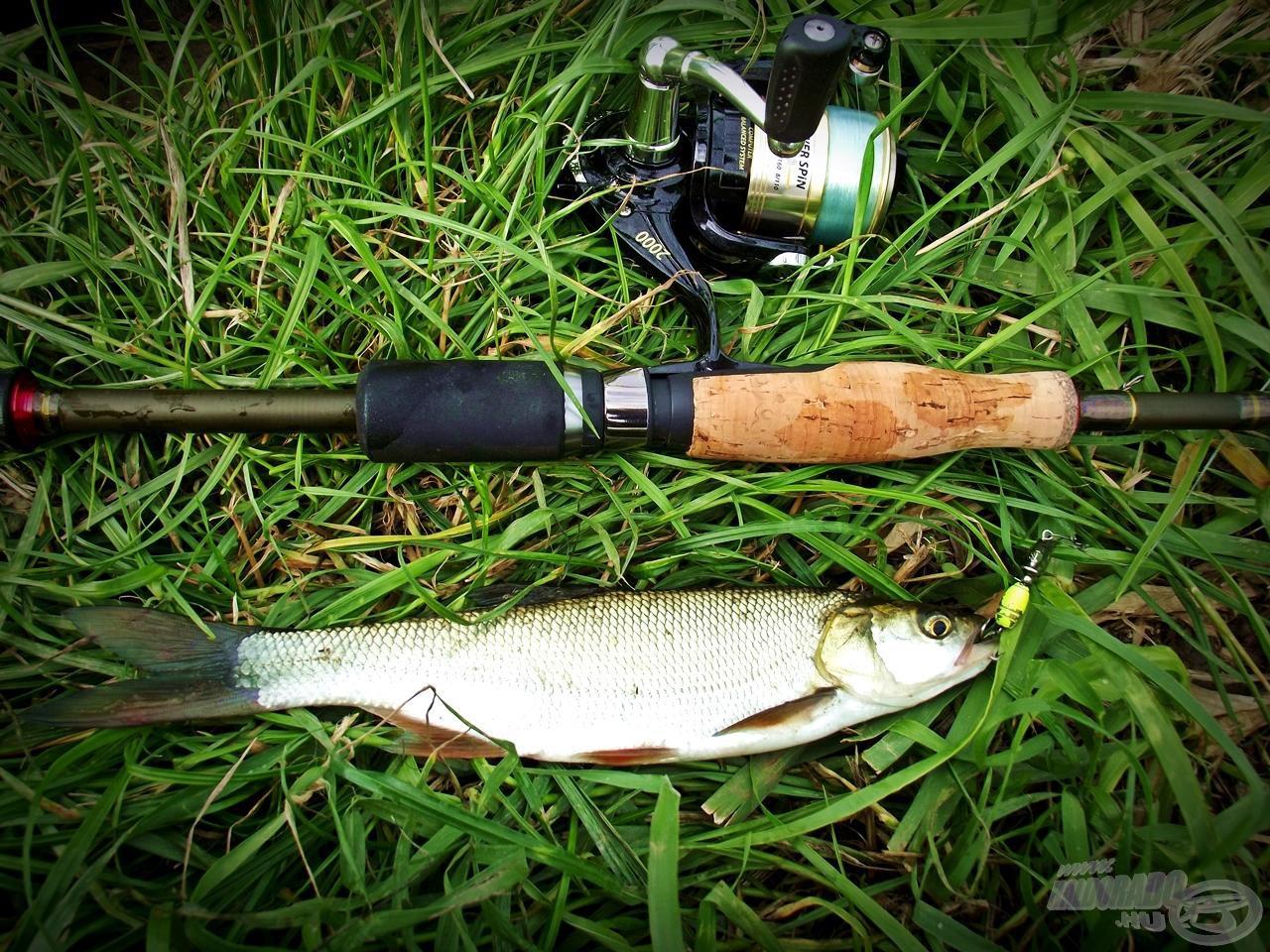 Kis bot, kis hal, viszont hatalmas élmény és maradandó emlék :)