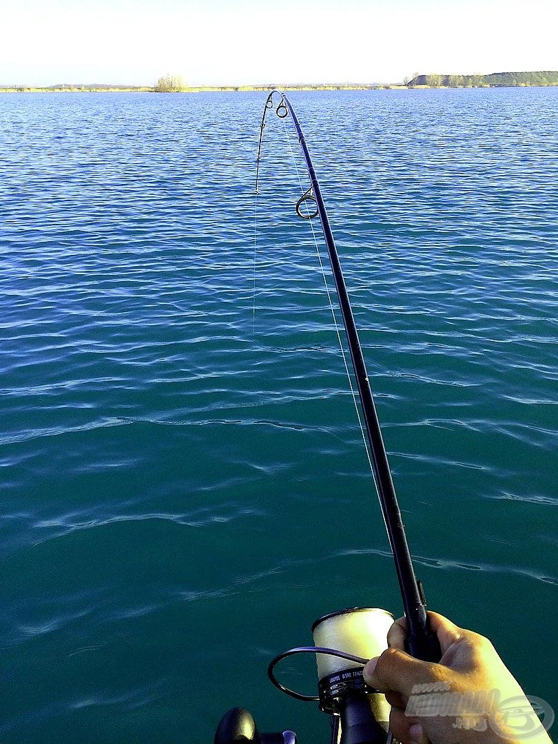 Elképesztő erejük van az itteni halaknak