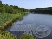 Vízbemutató - A Hársas tó