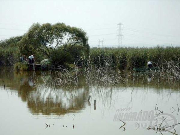 A kiseb szigetek akár több napon keresztül is lehetővé teszik a jó haltartó helyek meghorgászását.