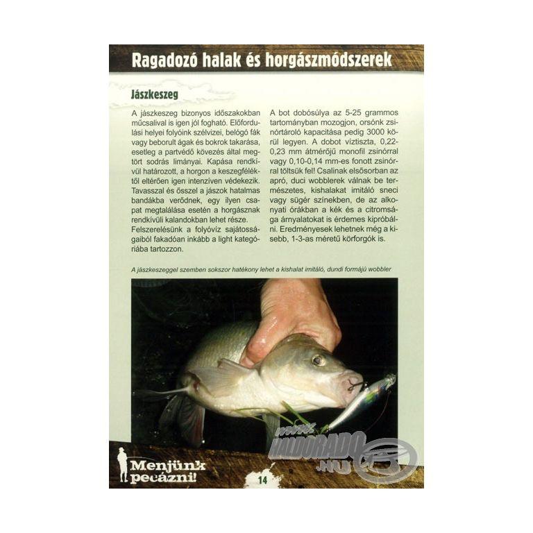 Darabos Tamás Zoltán Műcsalival ragadozó halra