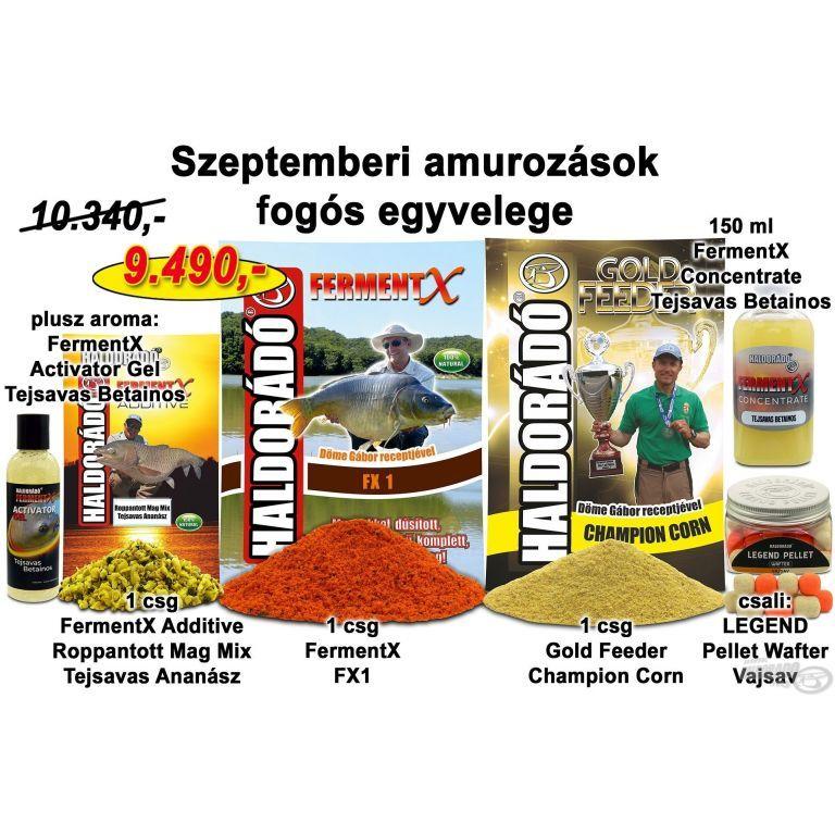 HALDORÁDÓ Őszi recept 2 - Szeptemberi amurozások fogós egyvelege