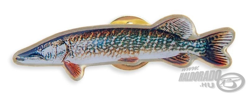 BALZER, |, Kit�z� 450Ft