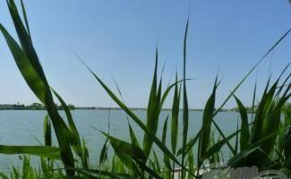 Abonyi horgásztavak