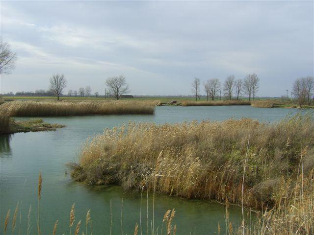 Borsosgyőr (Kékvízű tó, Országúti-tó)
