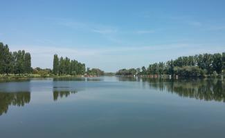 Dányi-tó