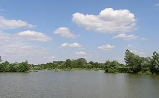 Magyarszecsődi-tó